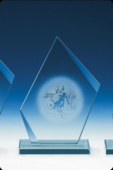 Trophée en verre : Plaque trapèze
