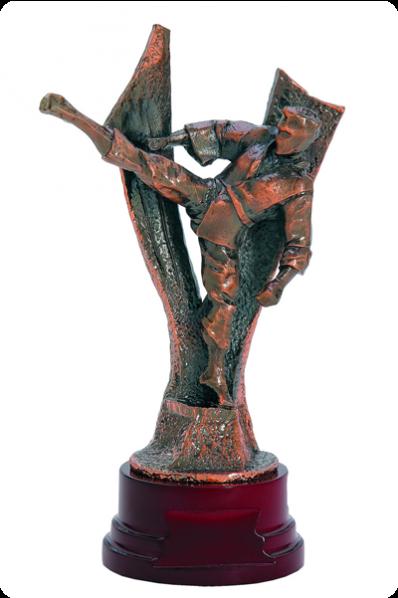 Karatéka avec jambe surélevée