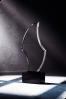 Trophée en verre : Le S