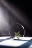 Plaquette étoile